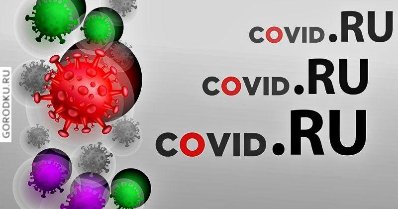 В России регистрируют всё меньше «коронавирусных» доменов