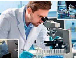 Городская больница Каменска-Уральского опубликовала прейскурант цен на платные лабораторные исследования